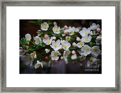 Spring Lanscape  Framed Print by Celestial Images