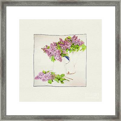 Spring Lilac. Framed Print by ShabbyChic fine art Photography