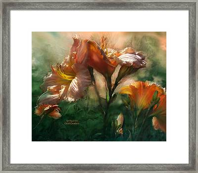 Spring Lilies Framed Print