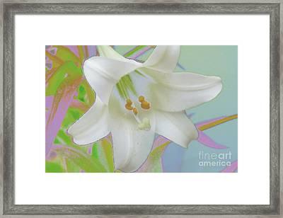 Spring Lily Pop Art Framed Print by Susan  Lipschutz