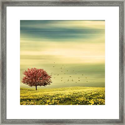 Spring Framed Print by Lourry Legarde