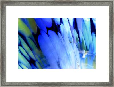 Spring Love Framed Print by Hanne Lore Koehler