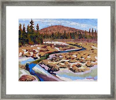 Spring Marsh Algonquin Framed Print