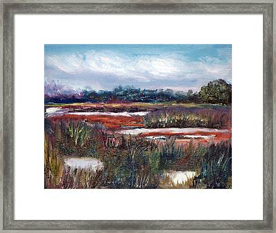 Spring Marsh Framed Print by Carol Sprovtsoff