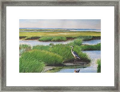 Spring Marsh Framed Print by Karol Wyckoff