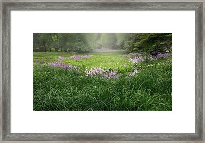 Spring Meadow 2016 Framed Print by Bill Wakeley