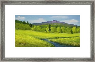 Spring Meadow Brook Framed Print by Frank Wilson