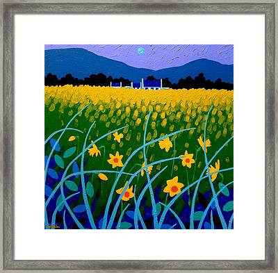 Spring Meadow Framed Print by John  Nolan