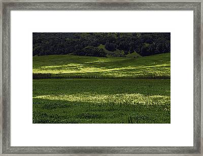 Spring Meadows Of Wildflowers Framed Print by Garry Gay