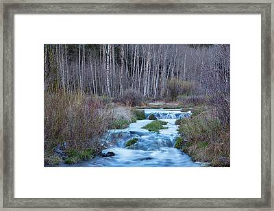 Spring Melt Off Flowing Down From Bonanza Framed Print by James BO Insogna
