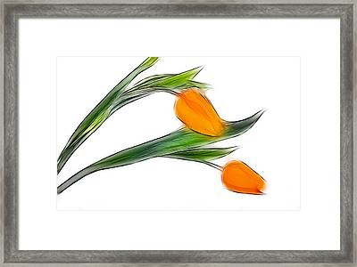 Spring Messenger Framed Print