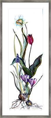 Spring Mix Framed Print by Mindy Newman