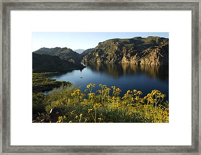 Spring Morning At The Lake Framed Print