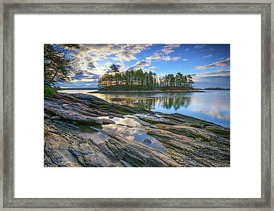 Spring Morning At Wolfe's Neck Woods Framed Print