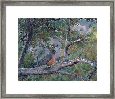 Spring Morning Robin Da Framed Print by Ernie Echols