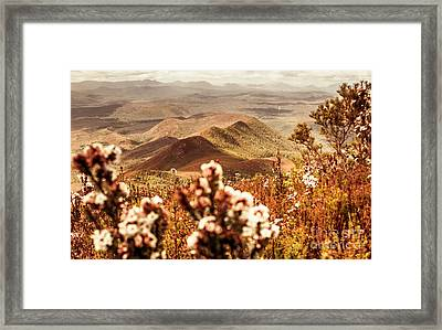 Spring Mountain Blossoms Framed Print