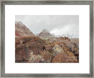 Spring Mountain Ranch Framed Print