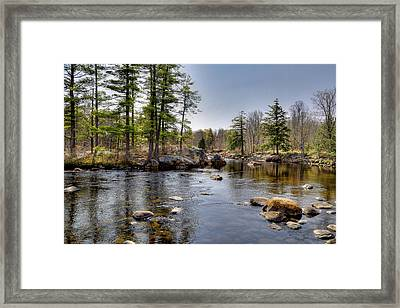 Framed Print featuring the photograph Spring Near Moose River Road by David Patterson