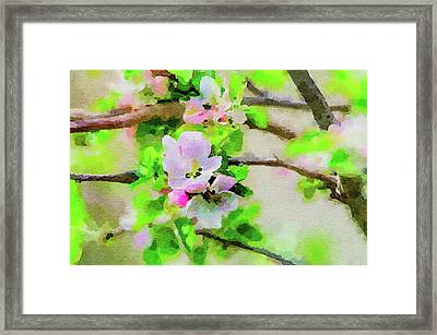 Framed Print featuring the painting Spring On A Branch by Steven Santamour