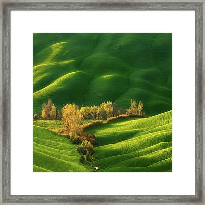 Spring On Fields... Framed Print