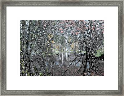 Spring On The Backwater Framed Print