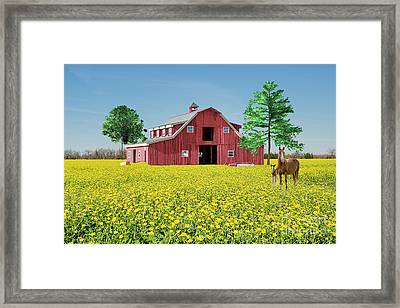 Framed Print featuring the photograph Spring On The Farm by Bonnie Barry