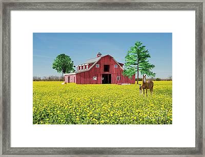 Spring On The Farm Framed Print by Bonnie Barry