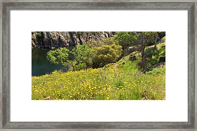 Spring On The Stanislaus River Framed Print