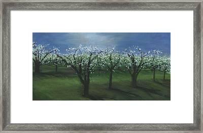 Spring Orchard Framed Print