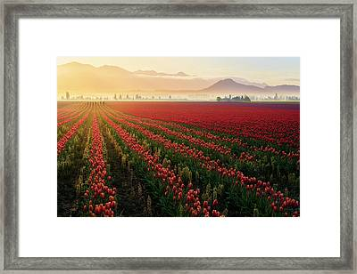 Framed Print featuring the photograph Spring Palette by Ryan Manuel