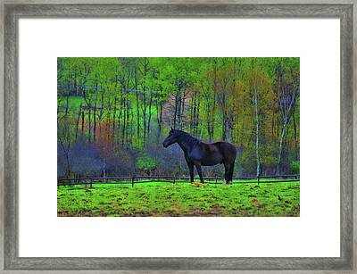 Spring Pasture Framed Print by JAMART Photography