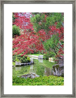 Spring Pond Reflection Framed Print