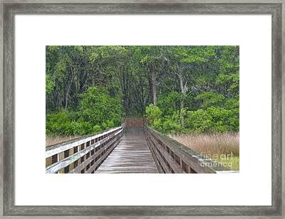 Framed Print featuring the photograph Spring Rain by Carol  Bradley