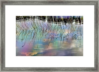 Spring Reflections Framed Print