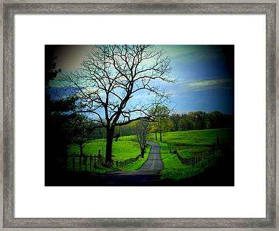 Spring Road Framed Print by Michael L Kimble