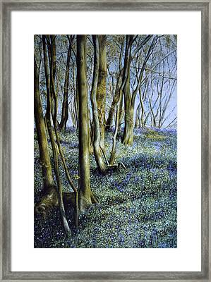 Framed Print featuring the painting Spring by Rosemary Colyer