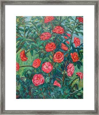Spring Roses Framed Print