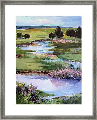 Framed Print featuring the painting Spring Runoff by Diane Ursin