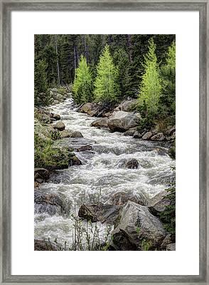 Spring Runoff Framed Print by G Wigler