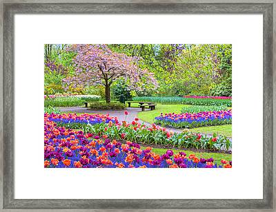 Spring Season Framed Print