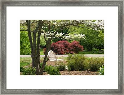 Spring Seating Framed Print