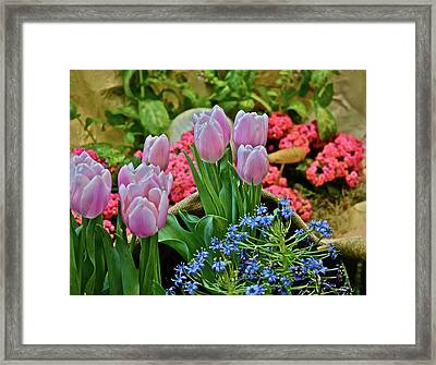 Framed Print featuring the photograph Spring Show 18 Treasures by Janis Nussbaum Senungetuk
