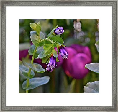 Framed Print featuring the photograph Spring Show 18 Violet Bells by Janis Nussbaum Senungetuk
