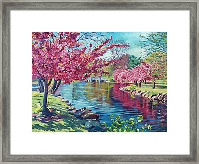 Spring Soliloquy Framed Print by David Lloyd Glover