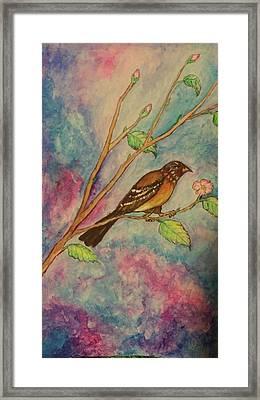 Spring Song Framed Print