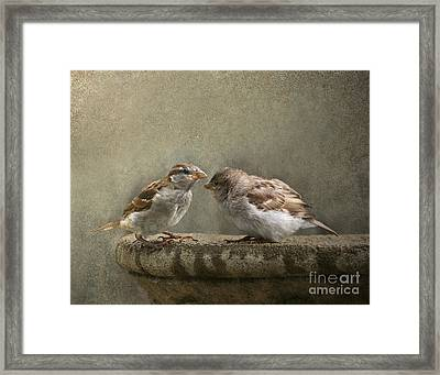 Spring Sonnet Framed Print by Jan Piller