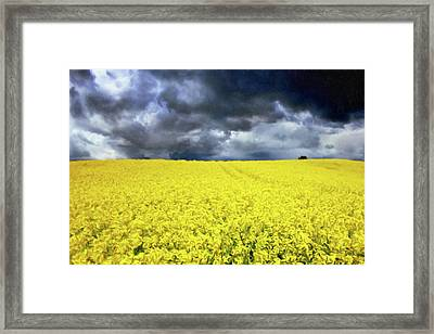 Spring Storm In Australia Framed Print