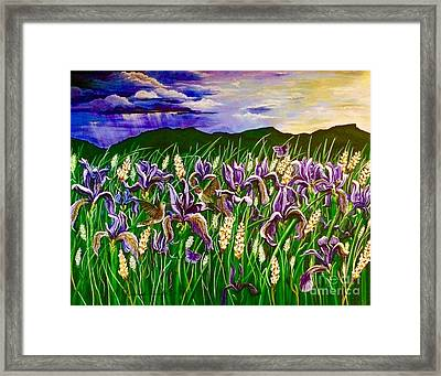 Spring Storm  Iris Fields Framed Print