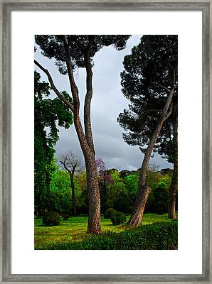Spring Storm Over Park Retiro Framed Print by Georgia Nick