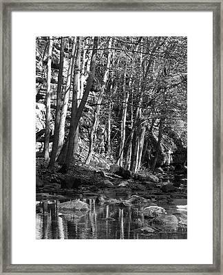 Spring Stream Framed Print by Anna Villarreal Garbis